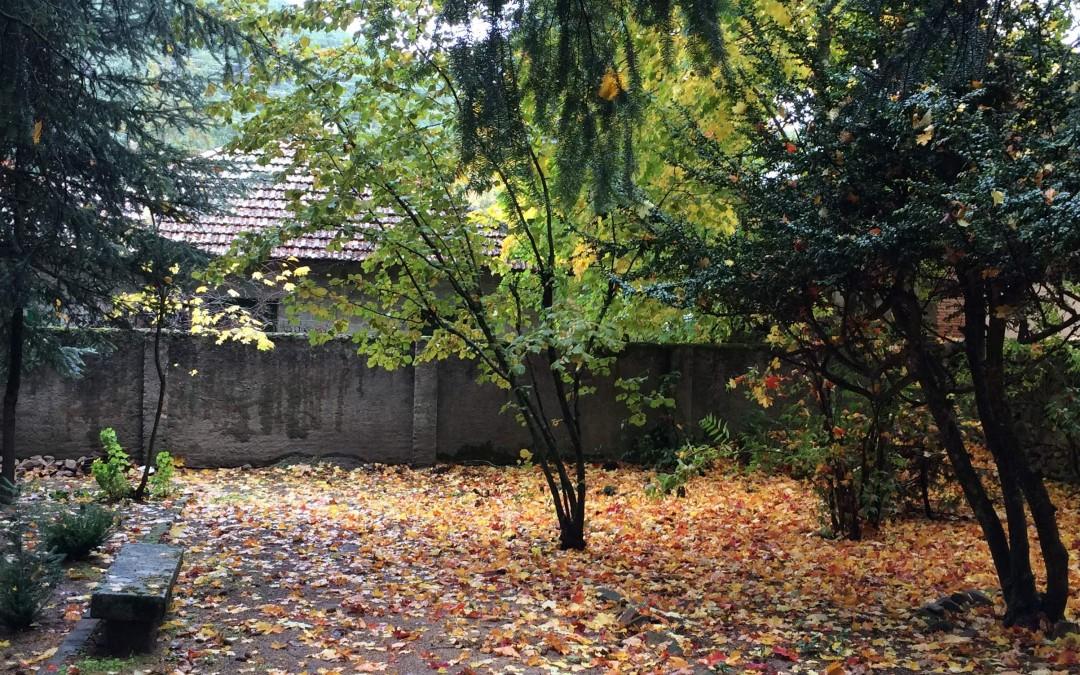 Jardín norte en otoño