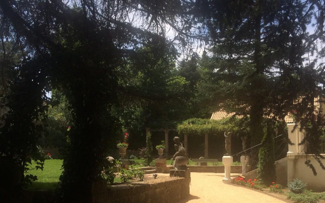Foto romantica del jardín entre arboles y ramas